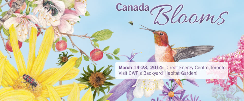 Visit us at Canada Blooms in Toronto March 16 for CWF Day!