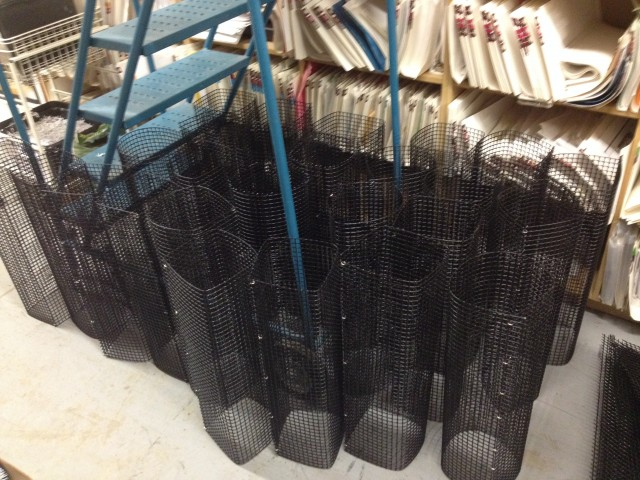 Eel pots in the making! Rolling the PVC coated steel mesh into cylinders was the first step into making our eel traps