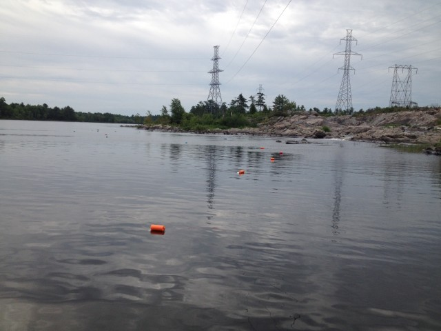 Success! All our eel pots were deployed and left to sit in the water in hopes to catch eels!