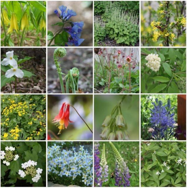 screenshot - facebook - spring gallery - 640px