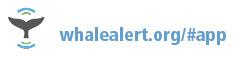 whalealert