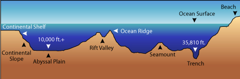 The features of the Ocean (Photo)