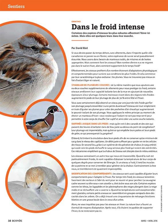 bio_jf2016_birding