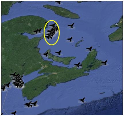 Carte des points d'observation des baleines noires de l'Atlantique Nord de la NOAA dans les Maritimes canadiennes montrant des observations confirmées de baleines noires en août 2016.