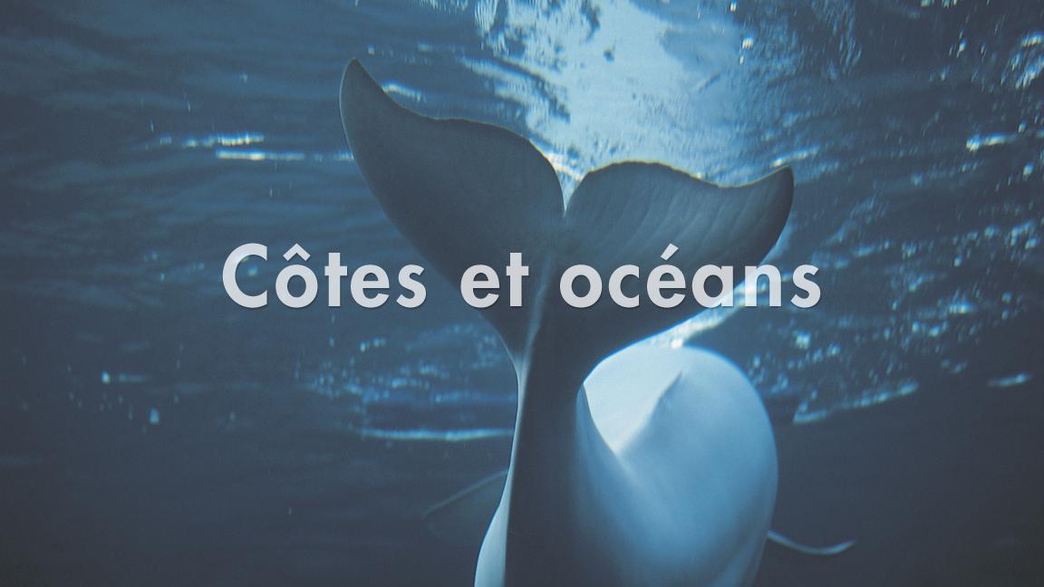 Côtes et océans