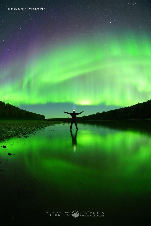 """""""Aurora Borealis"""" by Ryan Dickie"""