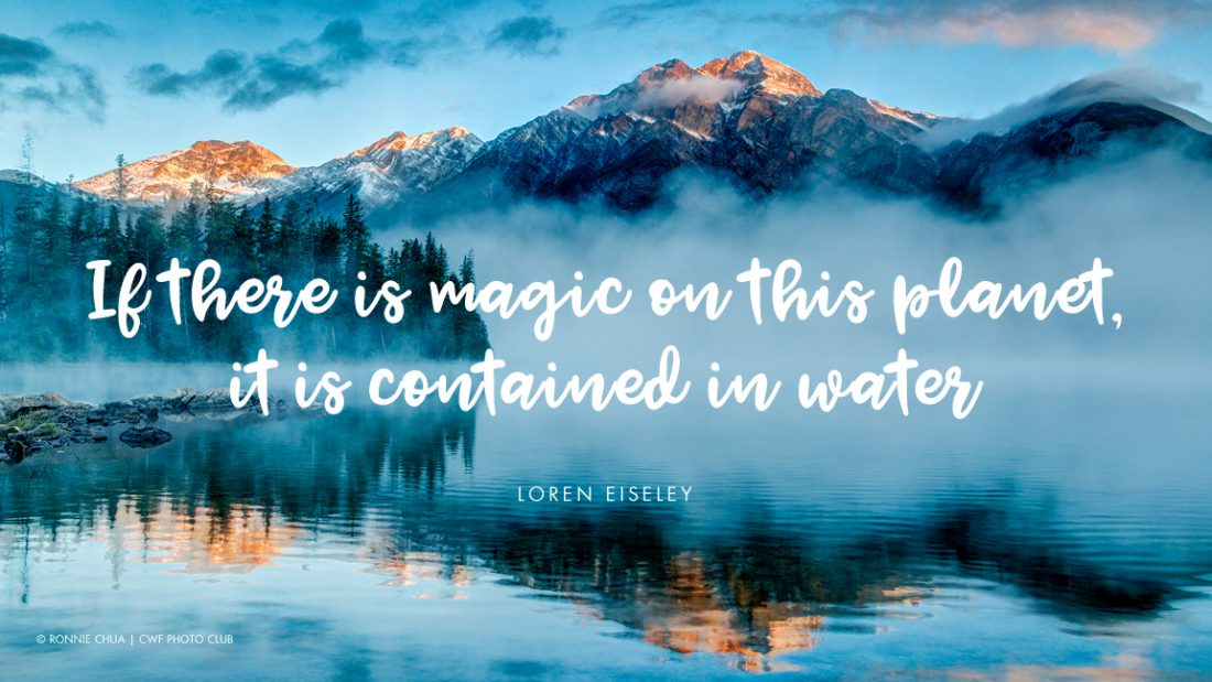 60 Quotes That Illustrate Why Water Is Life Magnificent Water Quotes