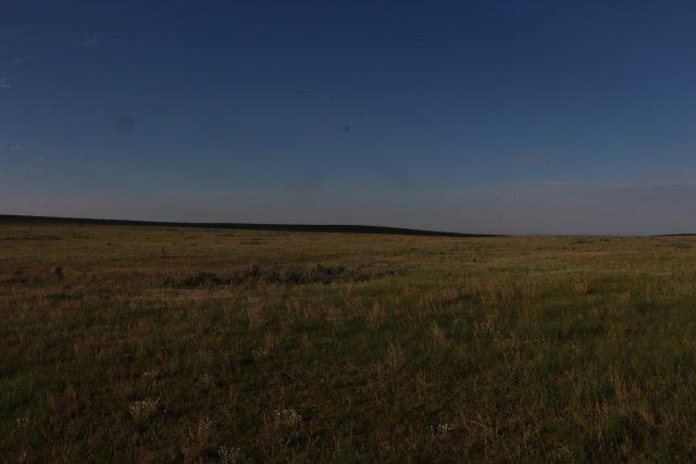 Native Mixed Grass Prairie