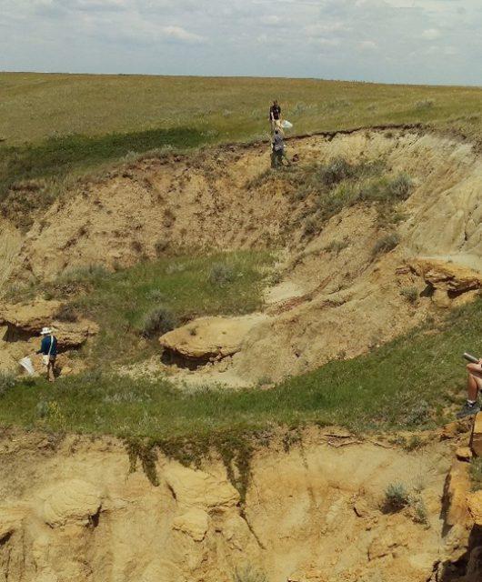 Net Collecting in Saskatchewan