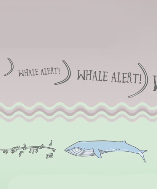 Whale Habitat and Listening Experiment