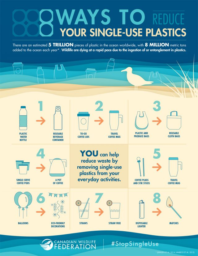 Reduce Your Single-Use Plastics