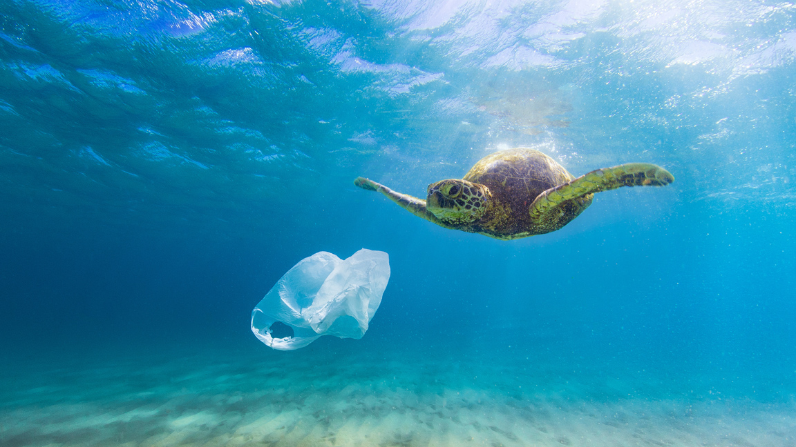 Why I care so much about plastic pollution