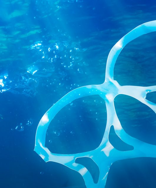 Single-Use Plastic Pollution