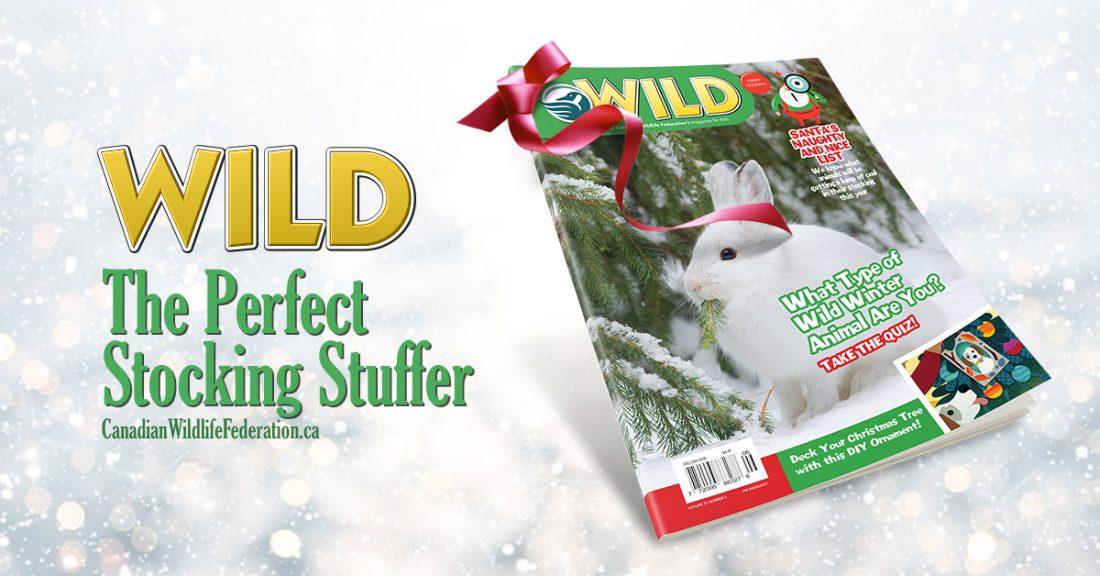 WILD magazine for kids