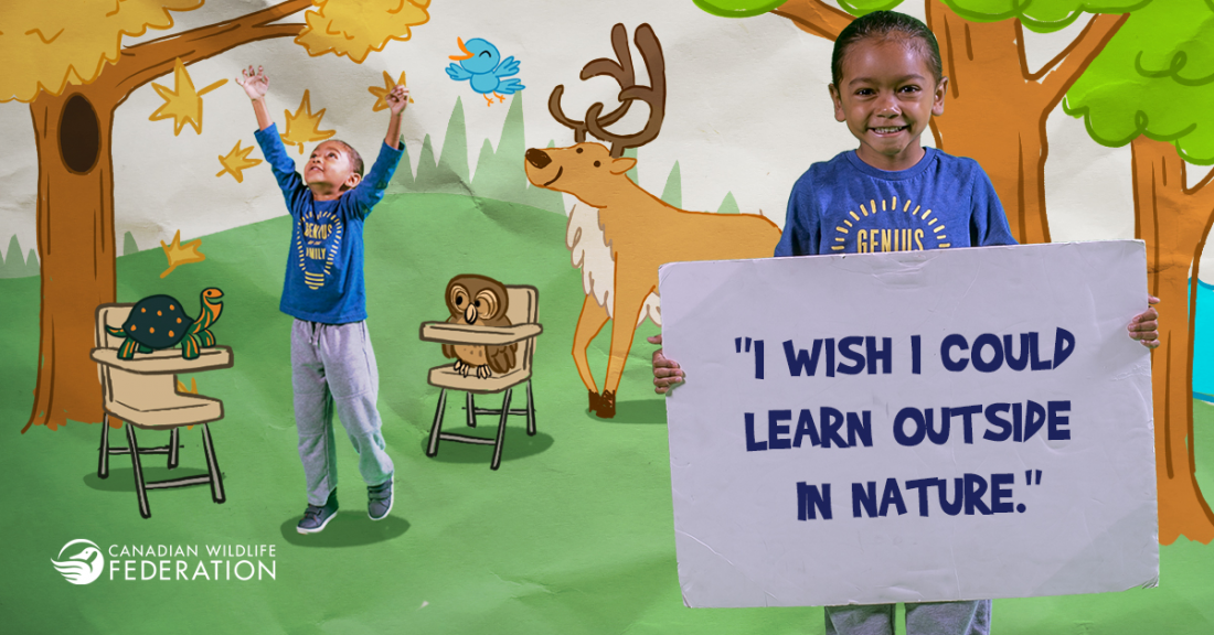 Make Wildlife Wishes Come True with the Canadian Wildlife Federation