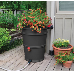 Back to Black @ https://sddrums.com/product/a-rain-barrel-earthminded-50-gallon-blackcharcoal