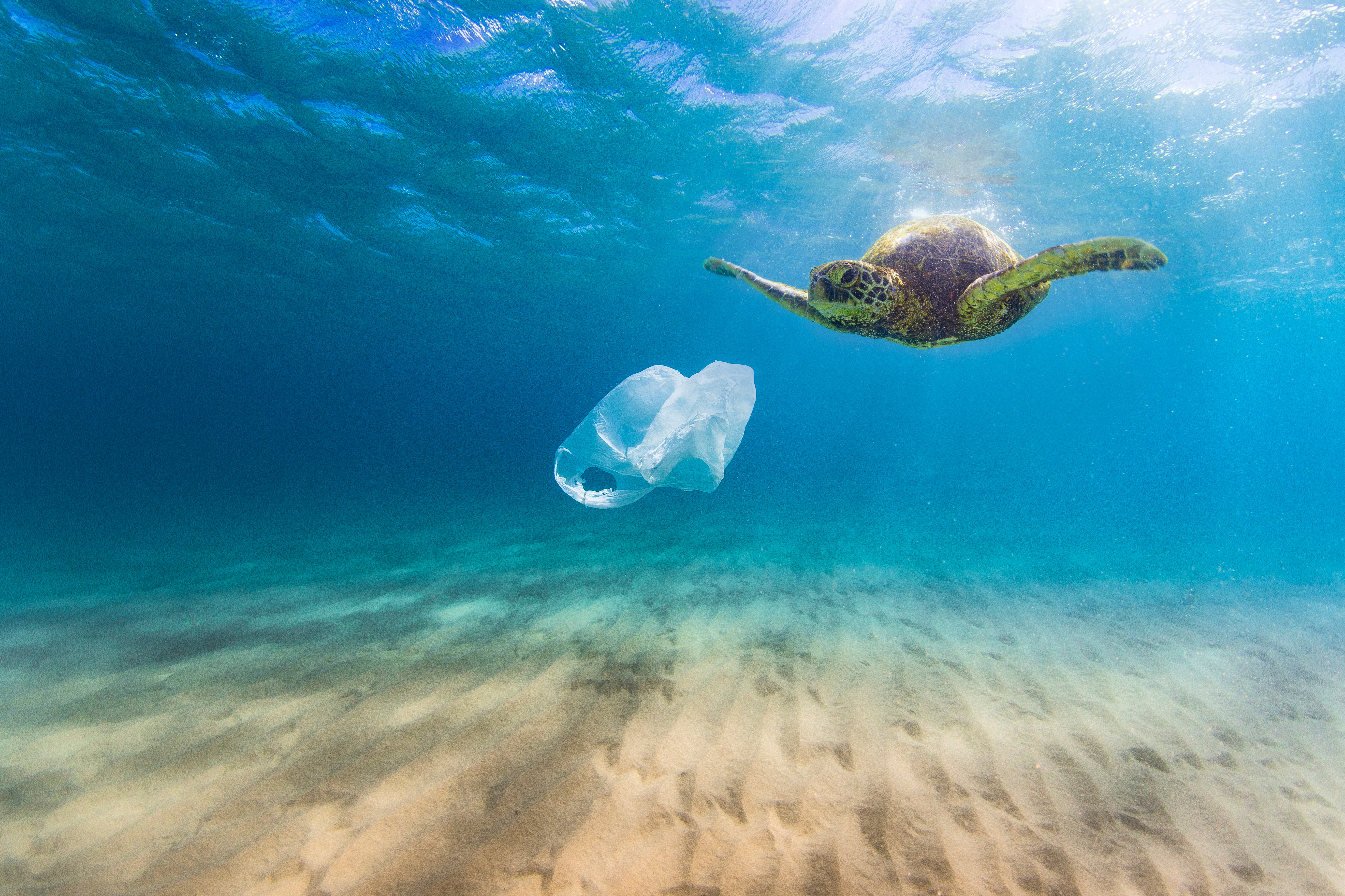#StopSingleUse Plastic Starting This Earth Day