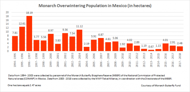 monarch overwintering population in mexico