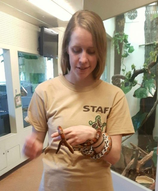 Nicole Webster, CCC Group 1 Participant, holding a Corn Snake during her Field Learning Placement at SCALES Nature Park