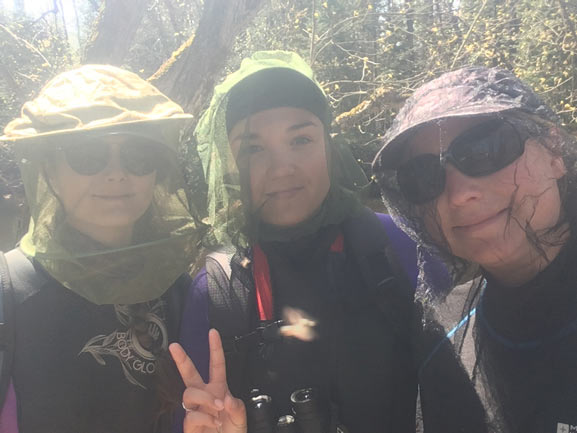 Scales crew out in the field looking for species at risk (photo credits Kimberly McGough)
