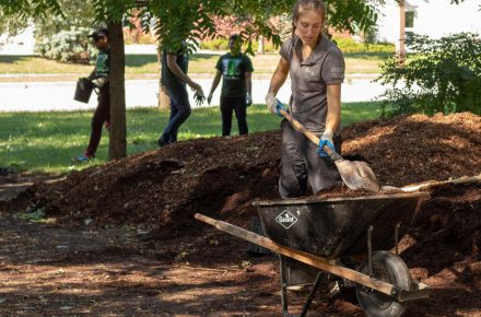 Getting soil and mulch to help newly planted trees.