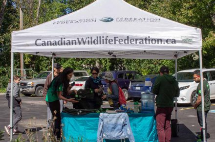 Registration for the TD event to plant 89 trees.