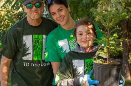 Planting the last tree!