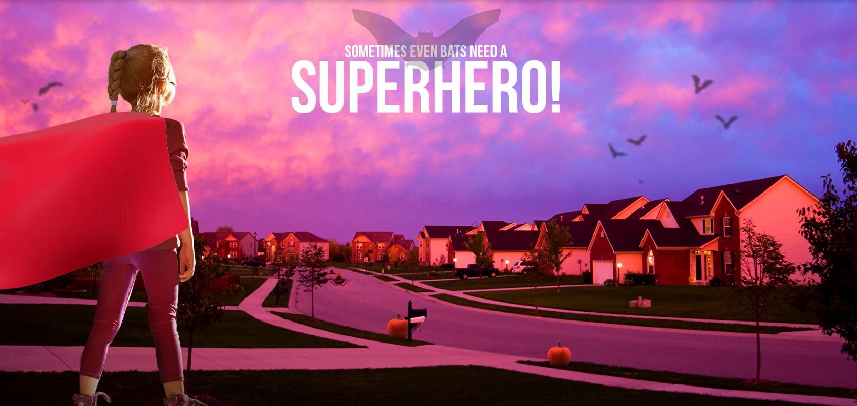 Sometimes Even Bats Need a Superhero