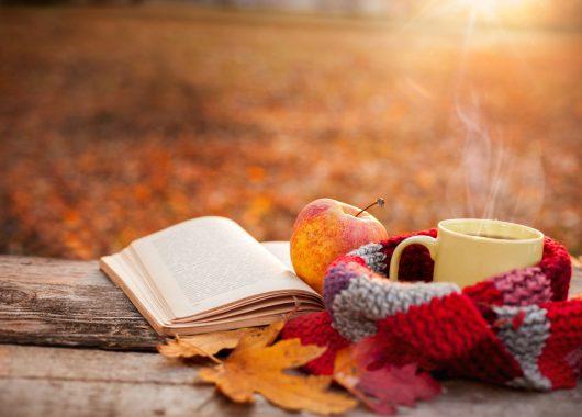 fall warm apple outside