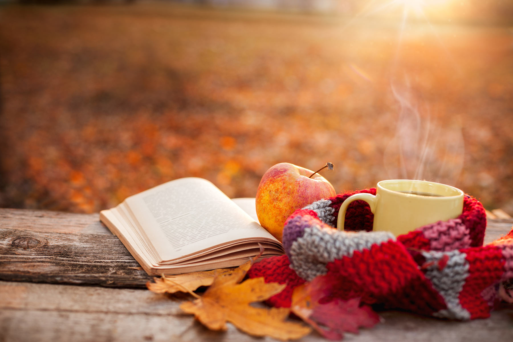7 ways to get cozy outdoors this fall!