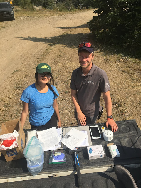 Our team was tasked with installing HOBO water temperature loggers in selected headwaters in Castle Provincial Park that were pre-selected by Albert Environment and Parks & TUC through geographic mapping software and aerial maps.