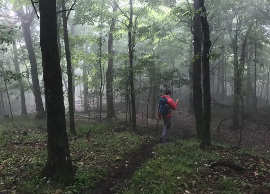 Hiking during a foggy day