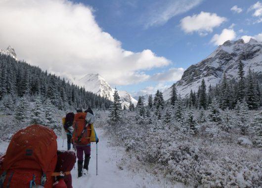 snowy trail ccc