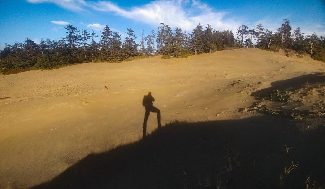 Sand dune on Wickaninnish Beach Pacific Rim National Park Reserve. Photo: Angela Rehhorn