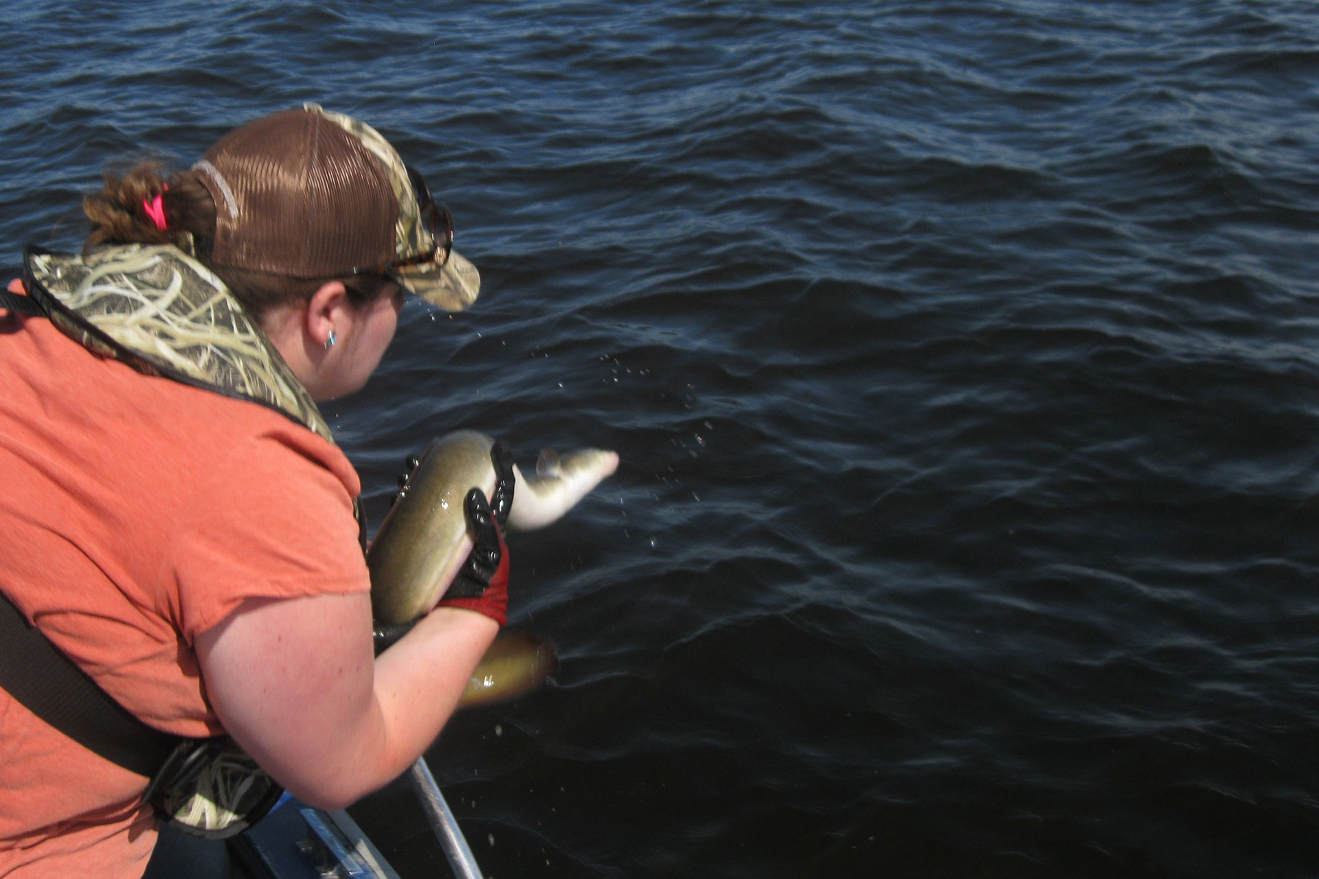 American Eel By-catch: Critical Information for Anglers