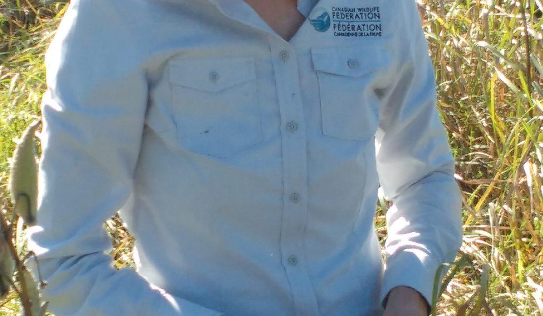 Carolyn Callaghan recueille des graines d'asclépiade sauvage.