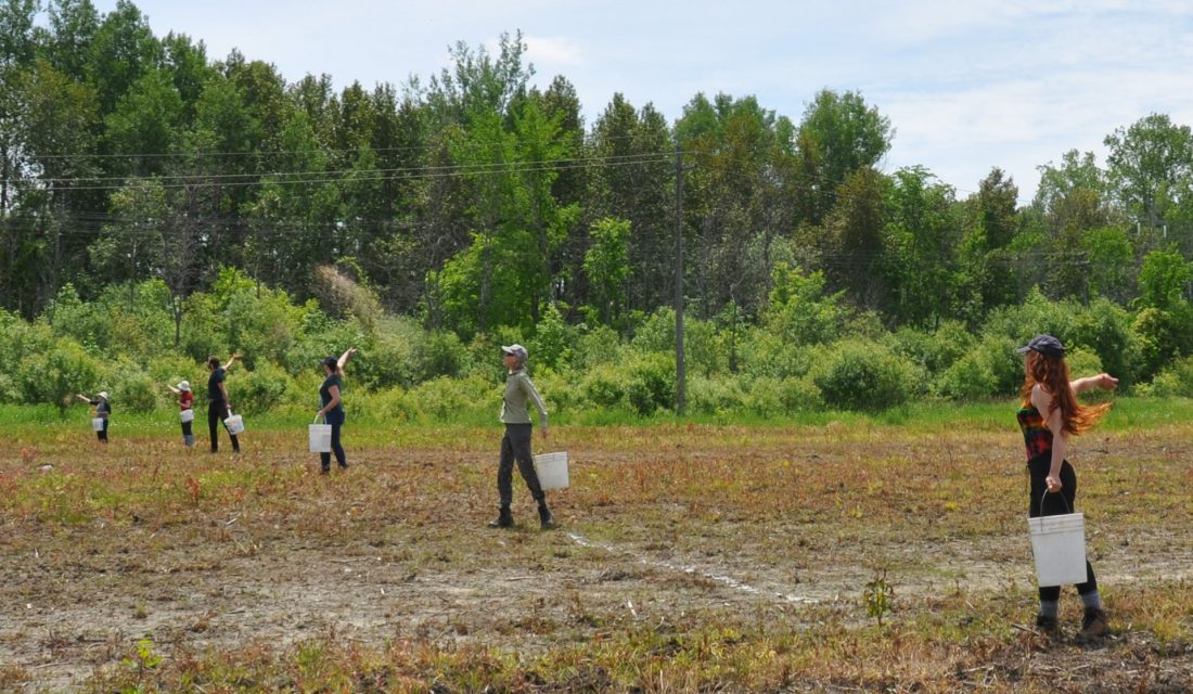 Des membres du personnel de la FCF et des bénévoles (Samantha Reynolds, Emily Armstrong, Paul Wityk, Carolyn Callaghan, Kira Balson) qui ensemencent le site du projet pilote de HydroOne à Ottawa.
