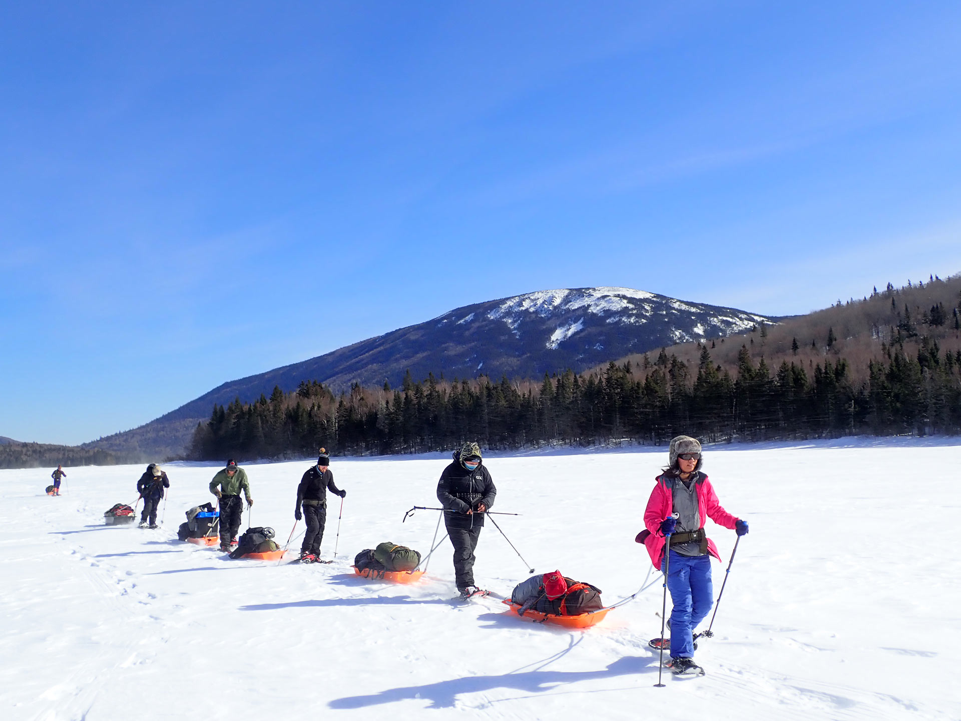 Crossing Nictau Lake with pulks. Photo by Andrew Stokes-Rees.