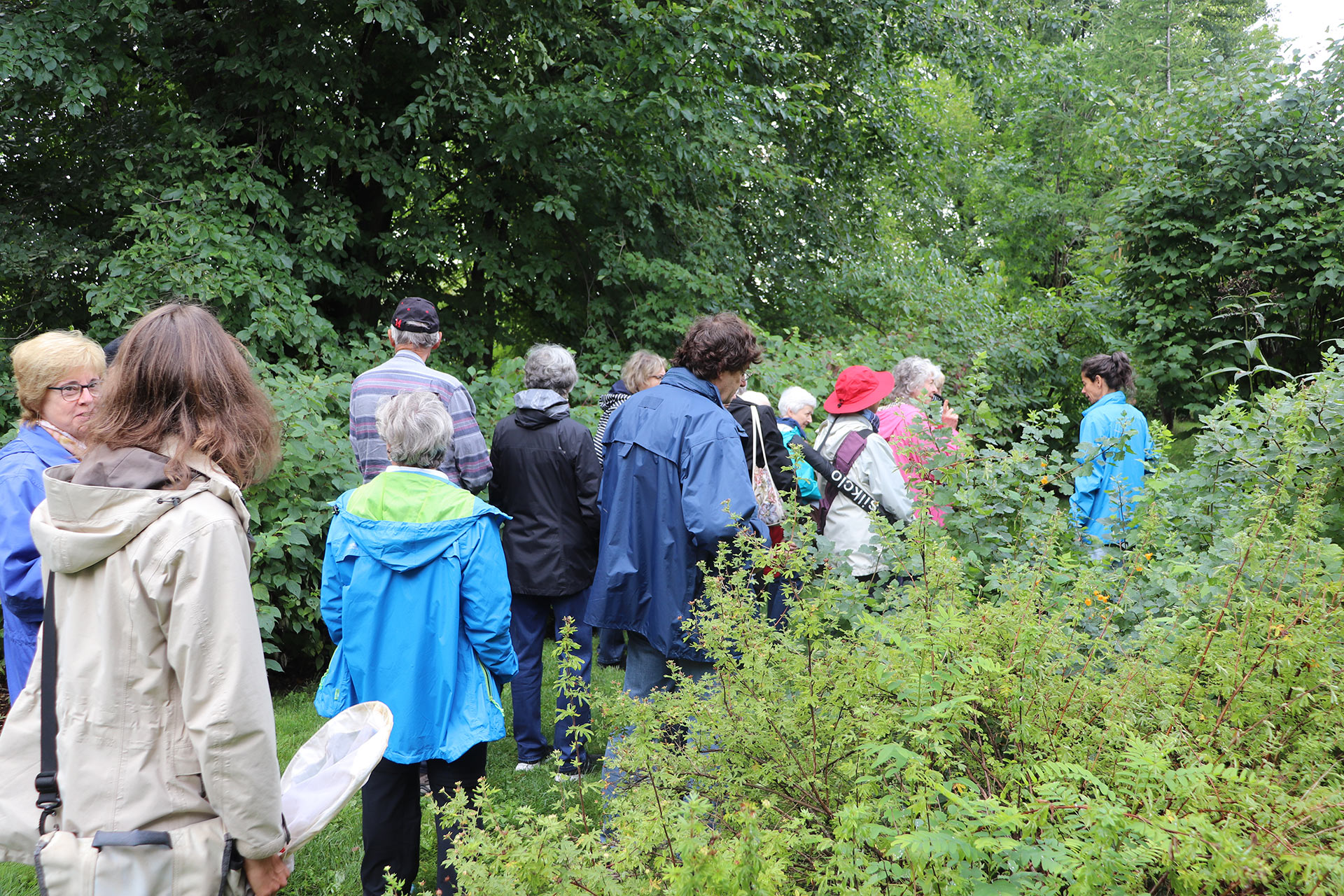 A guided walk around CWF's Wildlife-friendly Demonstration Garden.