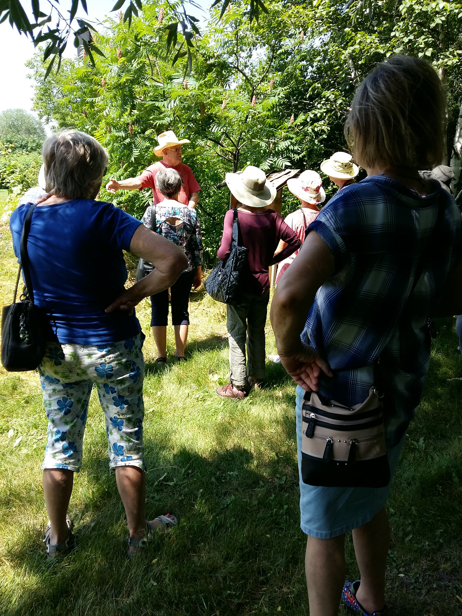 Expert Rob Longair explaining about solitary wasps near CWF's insect hotel.