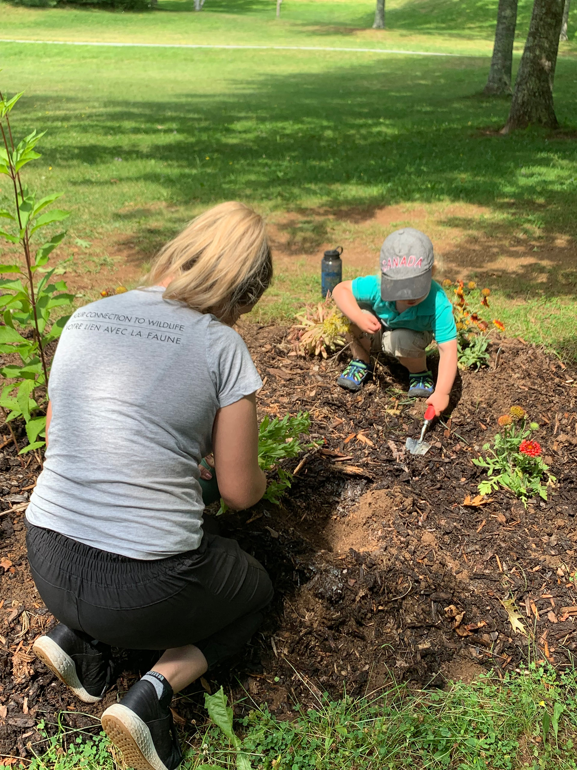Breagh Campbell, CWF's summer Conservation Education Intern, planting for butterflies with the public at Shubenacadie Wildlife Park.