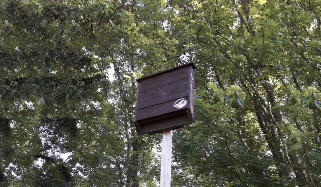 cwf bat house hor