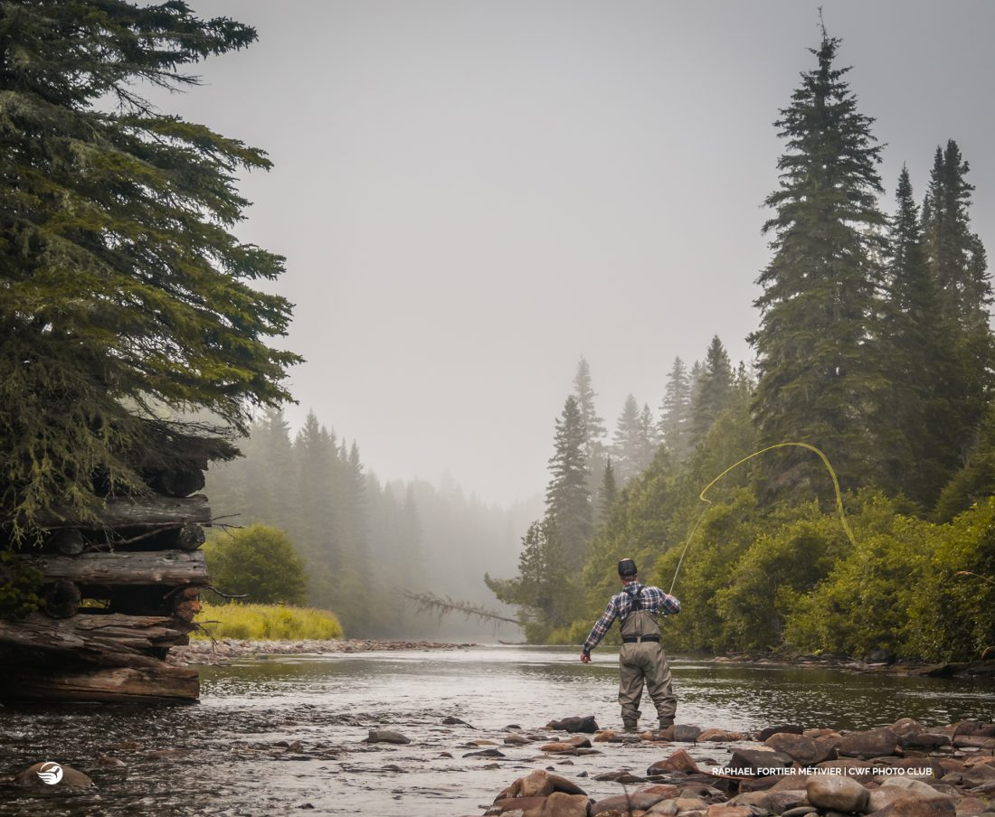 Connecting with Nature – 1st Runner Up Raphael Fortier Métivier, QC