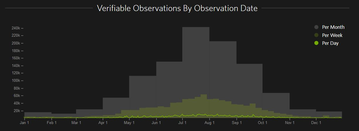 observations by date