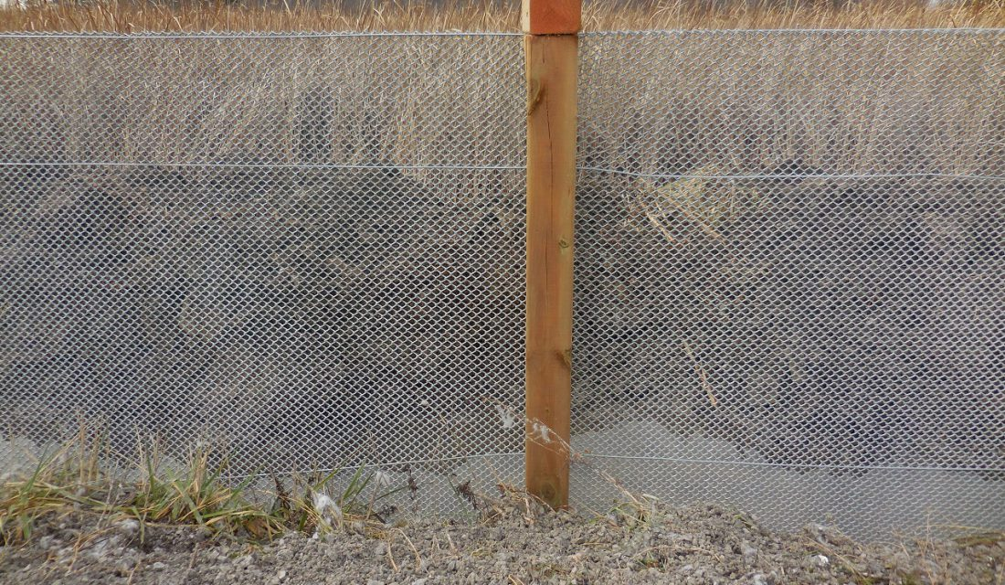Close-up of turtle fencing installed along the major hotspot CWF documented south of Ottawa.