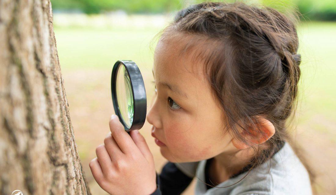 girl inspecting tree