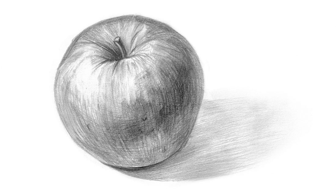 apple shading sketch