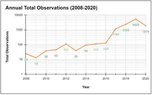 Number of iNaturalist research grade observations of Monarchs in Canada each year from 2008 to 2020.