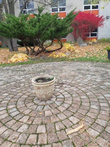 Courtyard Mosaic